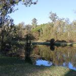 Little Coogee, Parramatta Park