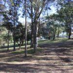 Gladesville Reserve