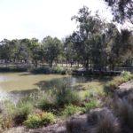 Maluga Passive Park