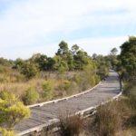 Millennium Parklands